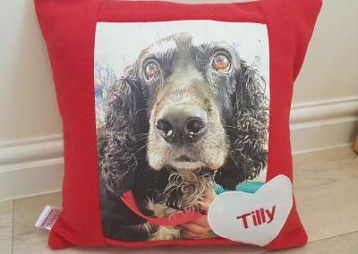 Custom Cushion - Memory Cushion For Cats & Dogs